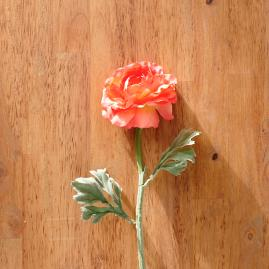 Faux Coral Ranunculus Stems, Set of 12