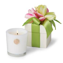 Lux Veranda 14 oz. Candle in Gift Box
