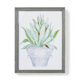 "19"" Cachepot Aloe Giclée Print II from the"