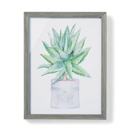 "19"" Cachepot Aloe Giclée Print I from the"