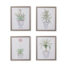 "35"" Cachepot Aloe Giclée Prints from the New"