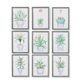 "19"" Cachepot Aloe Giclée Prints from the New"