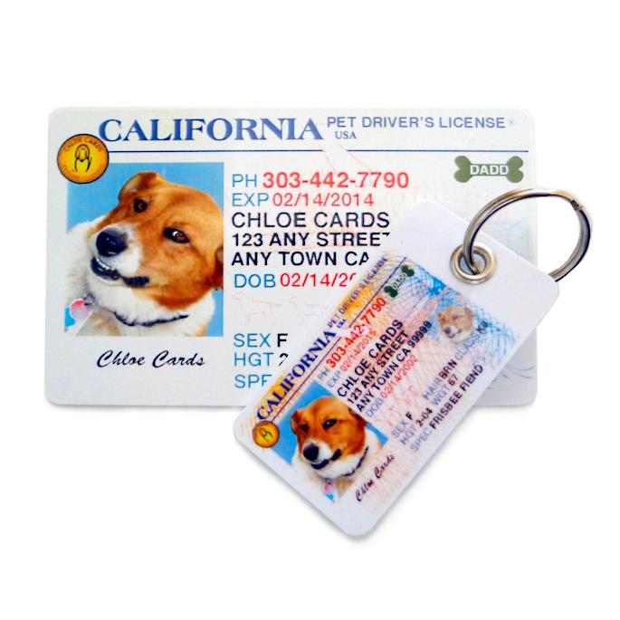 Pet Tag Kit Driver's License Id ® Frontgate Personalized
