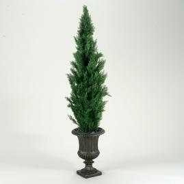 Cedar Tree in Brown Urn