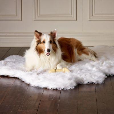 Orthopedic Shag Rug Pet Bed Frontgate