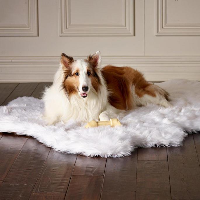 Dog Beds That Look Like Rugs: Orthopedic Shag Rug Pet Bed