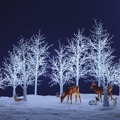 White Winter Bark Led Tree Frontgate