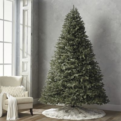Grand Silver Tip Noble 10' Full Profile Tree | Frontgate