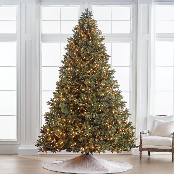 Noble Fir 10' Full Profile Tree | Frontgate