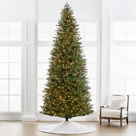 deluxe fraser quick light 12 slim profile tree