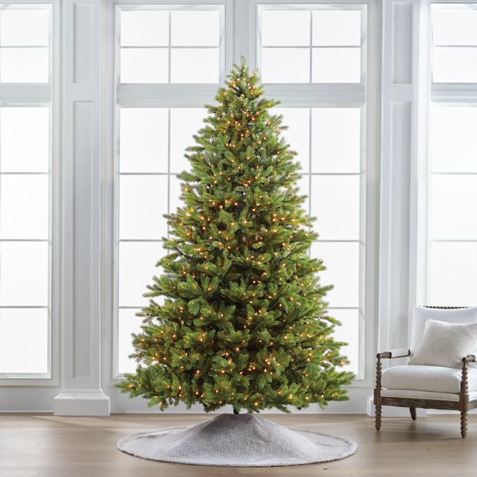 Balsam Fir 9' Full Profile Tree by Frontgate