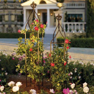 Fleur De Lis Trellis Frontgate