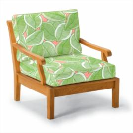 Cassara Lounge Chair with Cushions