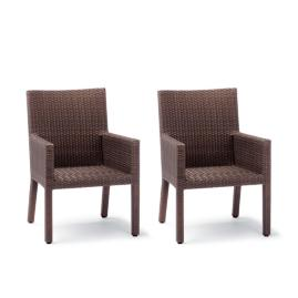 Palermo Set of Two Dining Arm Chairs in