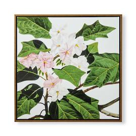 Giant Star Potato Tree Giclee on Canvas from