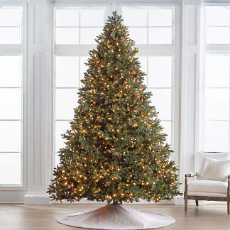 Deluxe Noble Fir Quick Light 10' Full Profile Tree