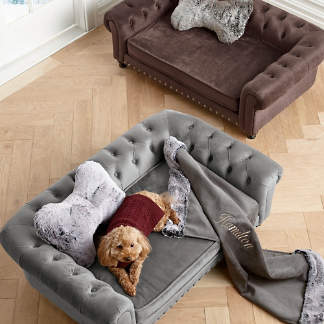 Superb Dog Beds Pet Beds Comfy Dog Beds Frontgate Squirreltailoven Fun Painted Chair Ideas Images Squirreltailovenorg