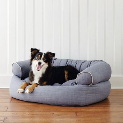 Comfy Couch Pet Bed Frontgate